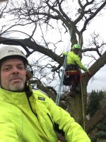 Tree Specialists Teamwork