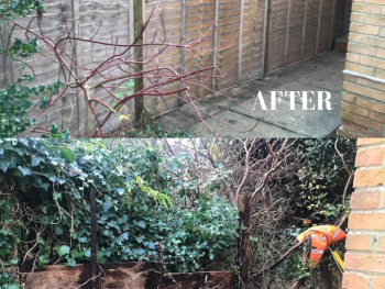 Fence Installed Towcester, before and after